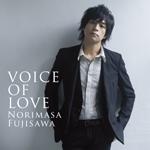 VOICE OF LOVE〜愛の力〜(CD+DVD)