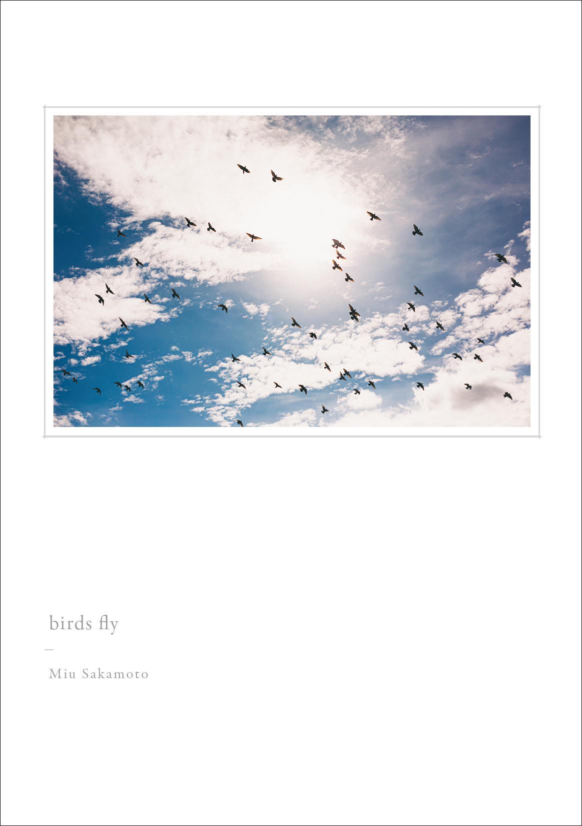 坂本美雨「birds fly」【初回限定盤】
