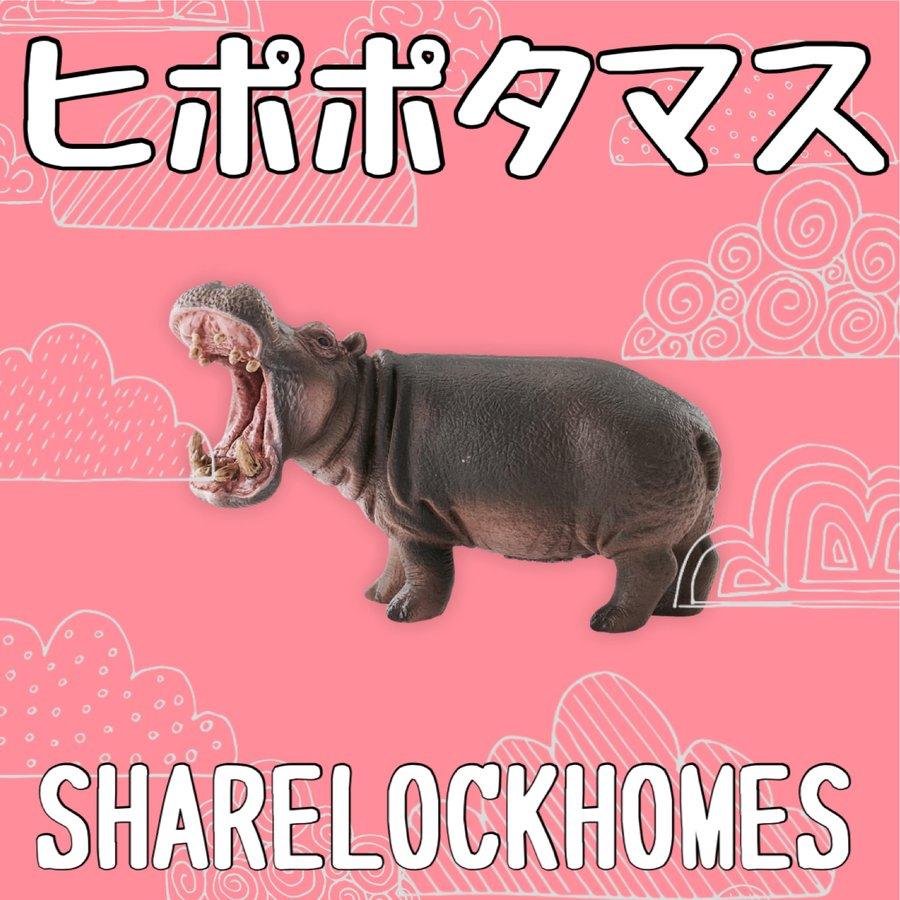 SHARE LOCK HOMES「ヒポポタマス」